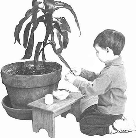 child cleaning leaves
